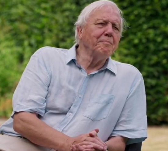 David Attenborough Becomes Fastest Man To Reach Million Instagram Followers How Much Is His Net Worth